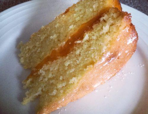Torta di albicocche (la prova del cuoco)
