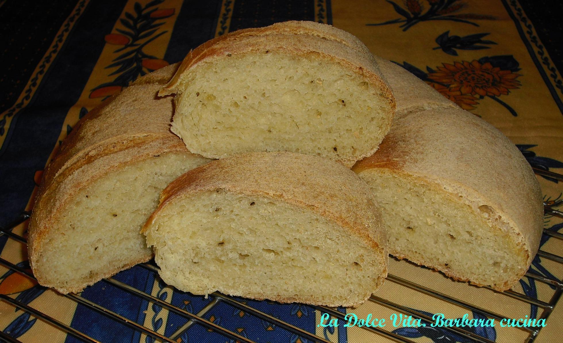 pane di grano duro 1