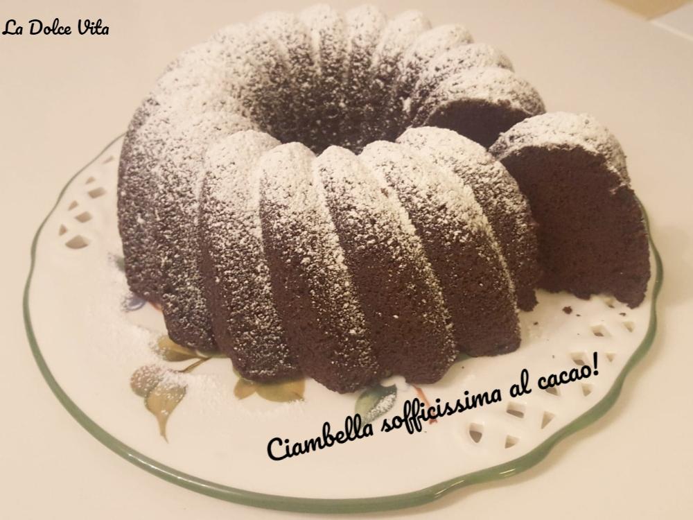 Ciambella sofficissima al cacao!