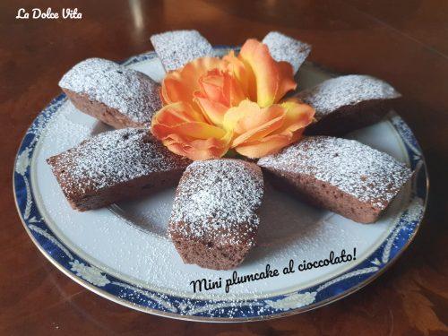 Mini plumcake al cioccolato sofficissimi!