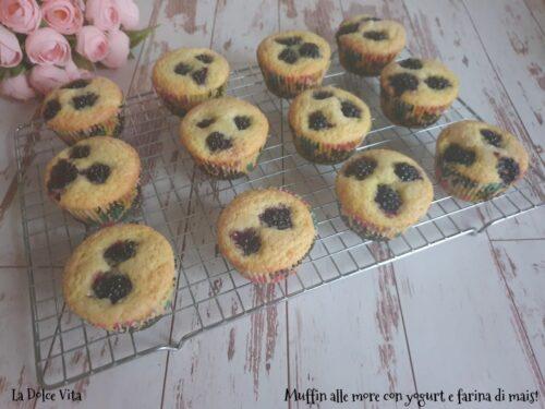 Muffin alle more con yogurt e farina di mais!