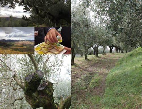 L'olio extravergine di oliva Redoro…vi racconto una Fiaba