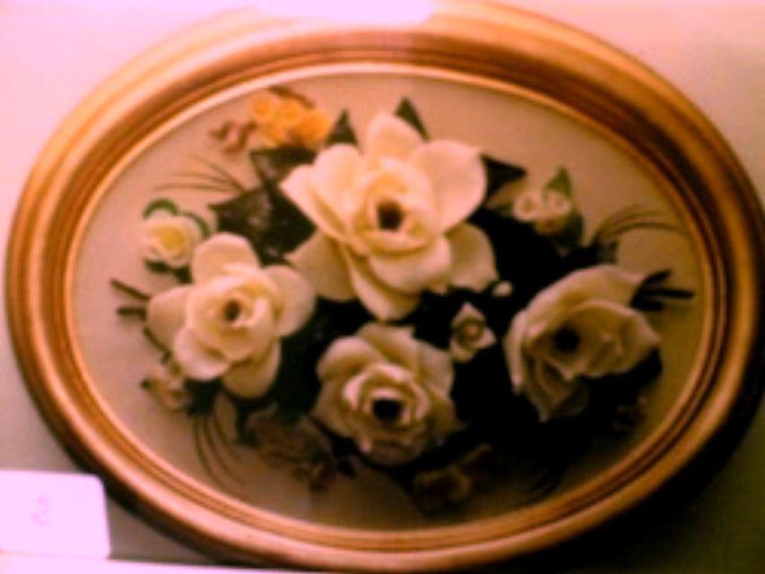 magnolie1[1]