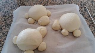 Tartarughe di pane con lievito naturale1