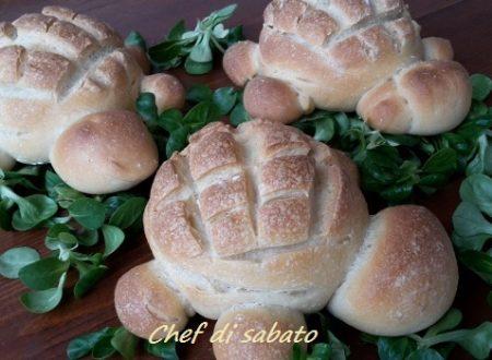 Tartarughe di pane con lievito naturale