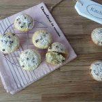 Muffin avena cioccolato e noci