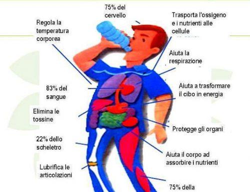L'acqua: il miglior alleato del nostro organismo