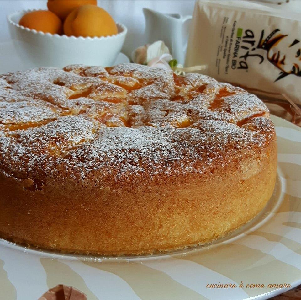 torta dolce con albicocche e yogurt