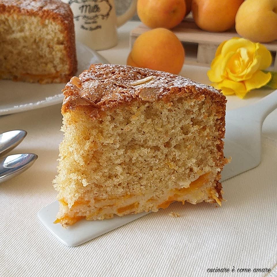 torta dolce morbidella albicocche e mandorla