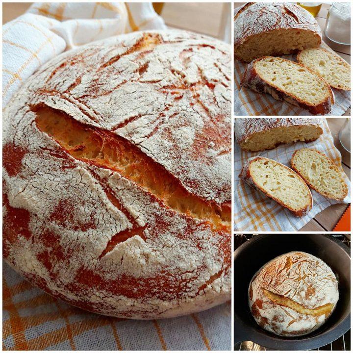 pane fatto in casa ricetta con lievito di birra