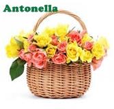 firma Antonella 3