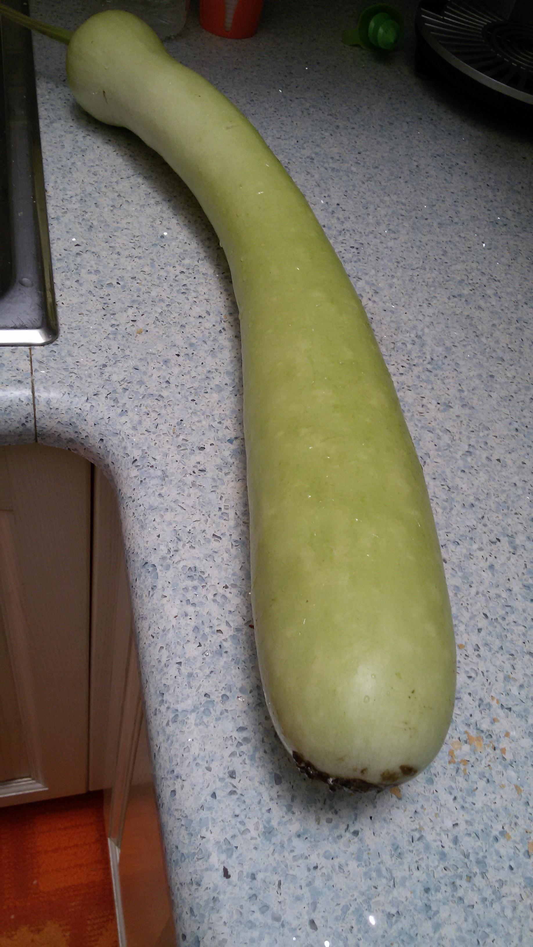 Zucchina lunga con le uova le delizie di danya for La zucchina