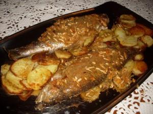 trota-salmonata