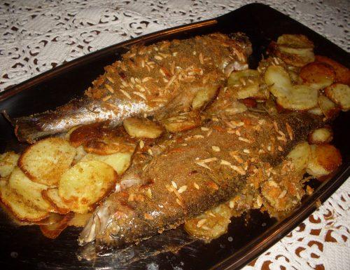 Trote salmonate in crosta di rosmarino e mandorle