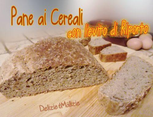 """Pane con lievito """"di riporto"""""""