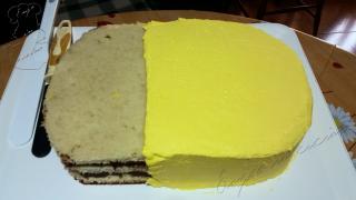 Pan di Spagna con giallo-w