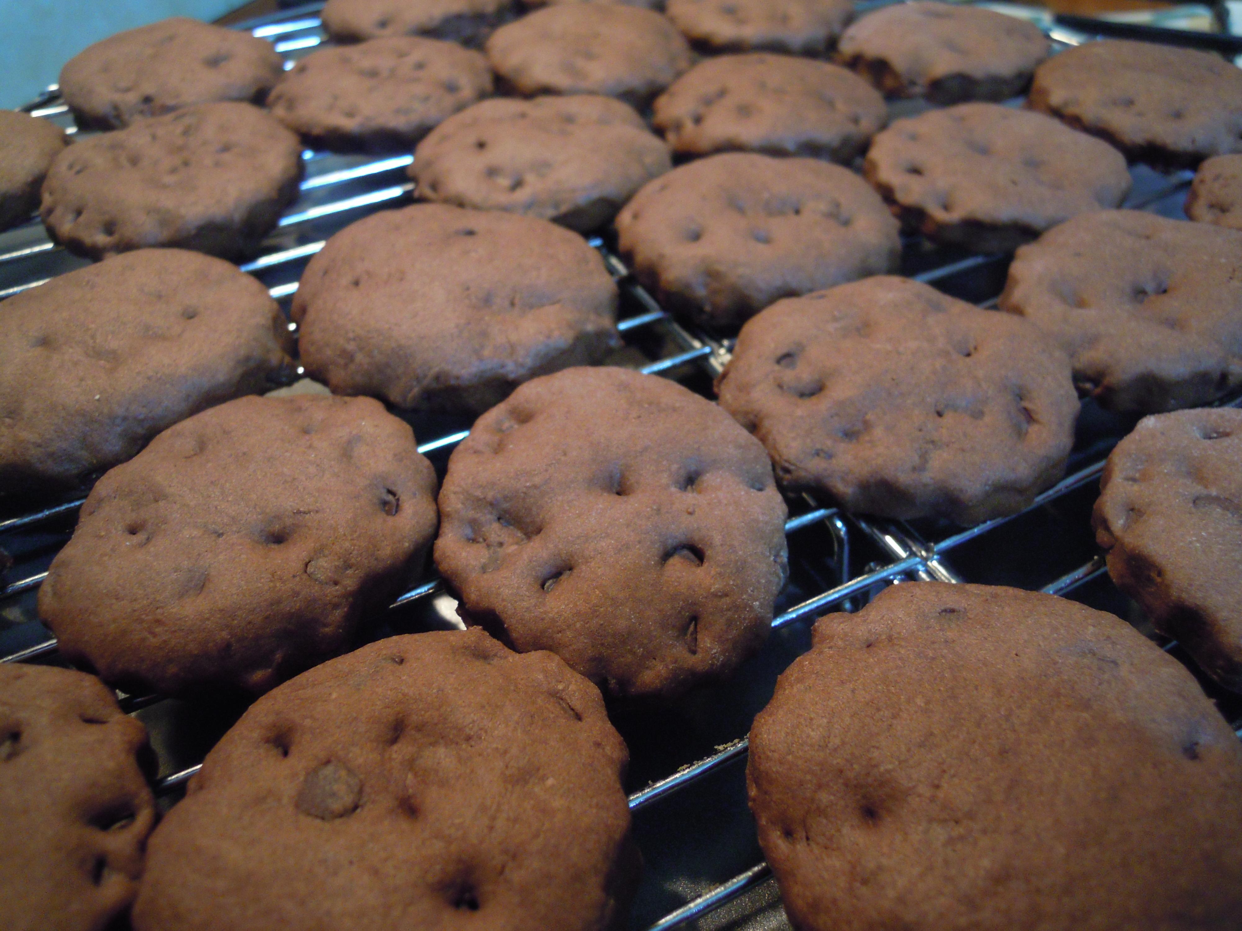 Biscotti al cioccolato tipo gocciole extradark