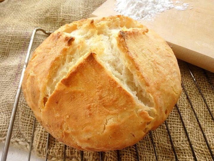 pane casereccio cotto in pentola senza glutine
