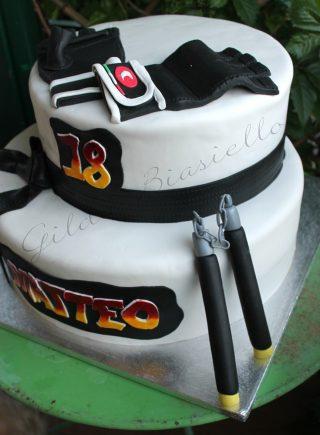torta arti marziali