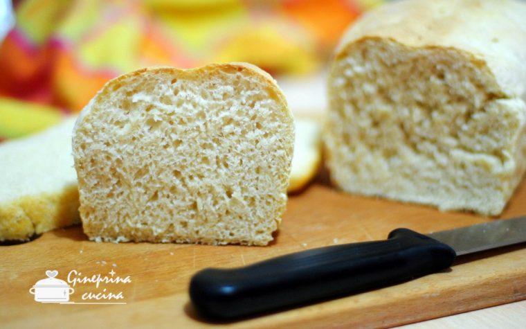 pane bianco con aggiunta di siero di kefir metodo veloce