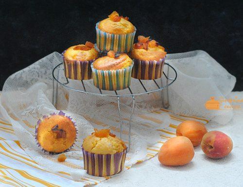 muffin allo yogurt con albicocche secche