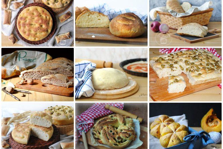 il pane e altri lievitati: dalla farina al prodotto finito