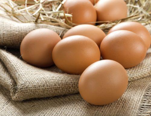 Pastorizzazione delle uova