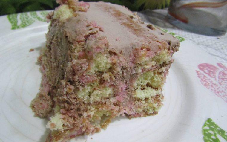 Tiramisù Ice una torta gelato con i savoiardi e crema di nocciole