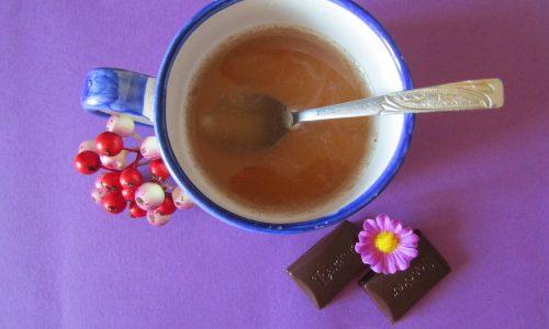 Ginger Bread tè nero Assam del sud india un tuffo nel Natale