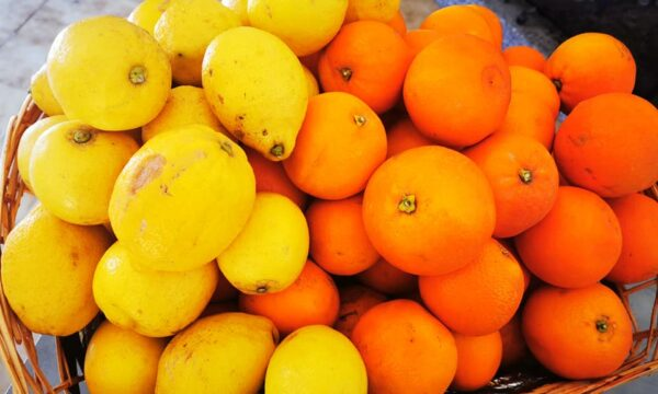 Oranfrutta, dalle pendici dell'Etna tutta la bontà della Sicilia