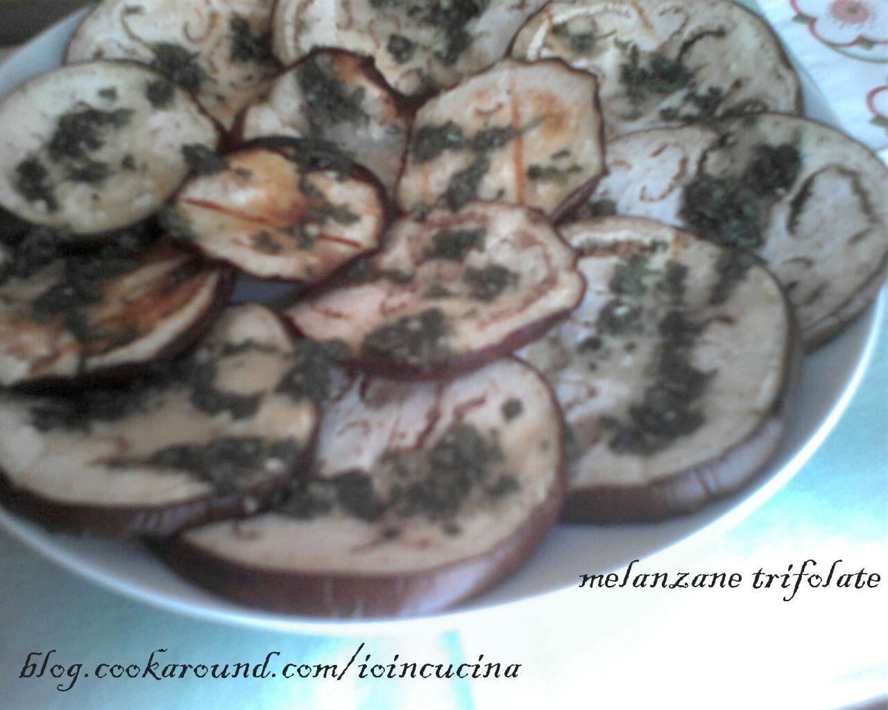 melanzane trifolate