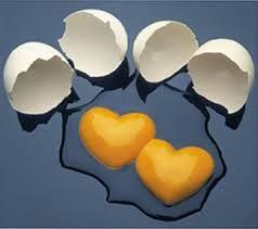 le uova