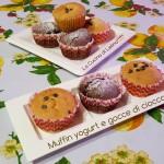 Muffin yogurt e gocce di cioccolato