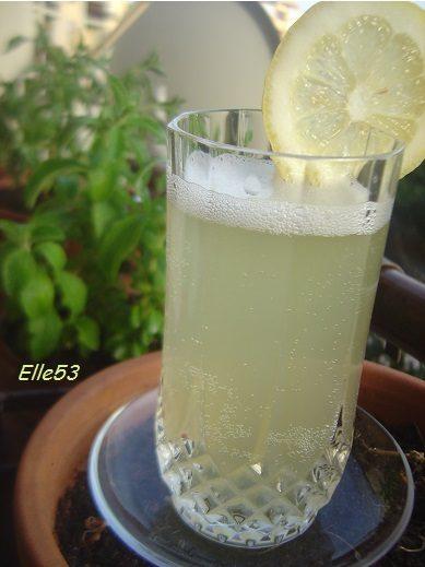 Bibita limone & stevia