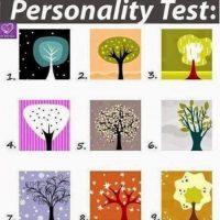 Che personalità hai? Scoprilo con....UN ALBERO!