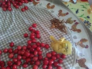 ciliegie sotto grappa
