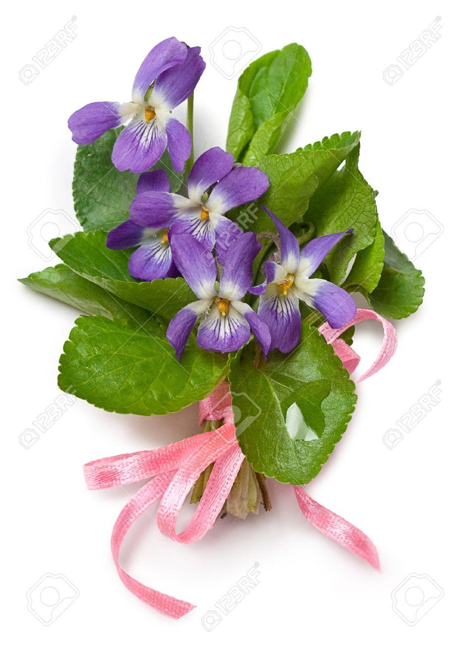 Fiori di primavera da mangiare omaggio alle donne for Fiori di primavera