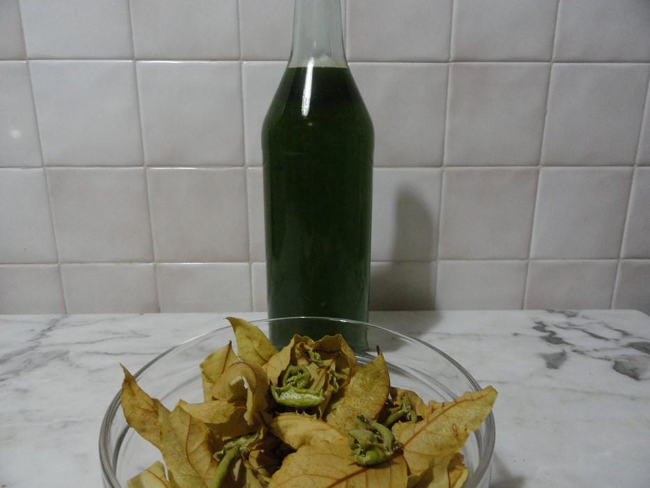 Liquore di alloro: digestivo tutto da gustare | cucinare.it