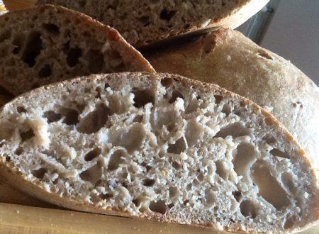 Pane con semi di girasole e sesamo con i licoli