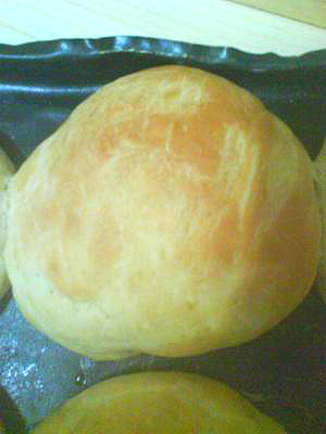 dibber rolls