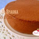 Pan di Spagna soffice al Cacao