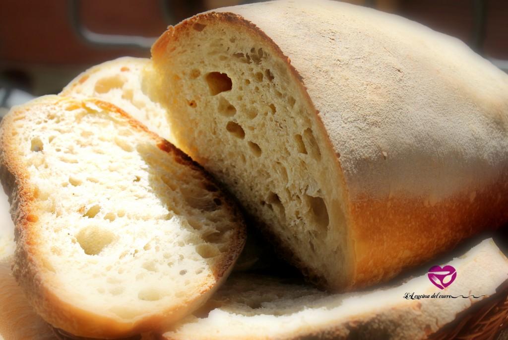 prova pane 1