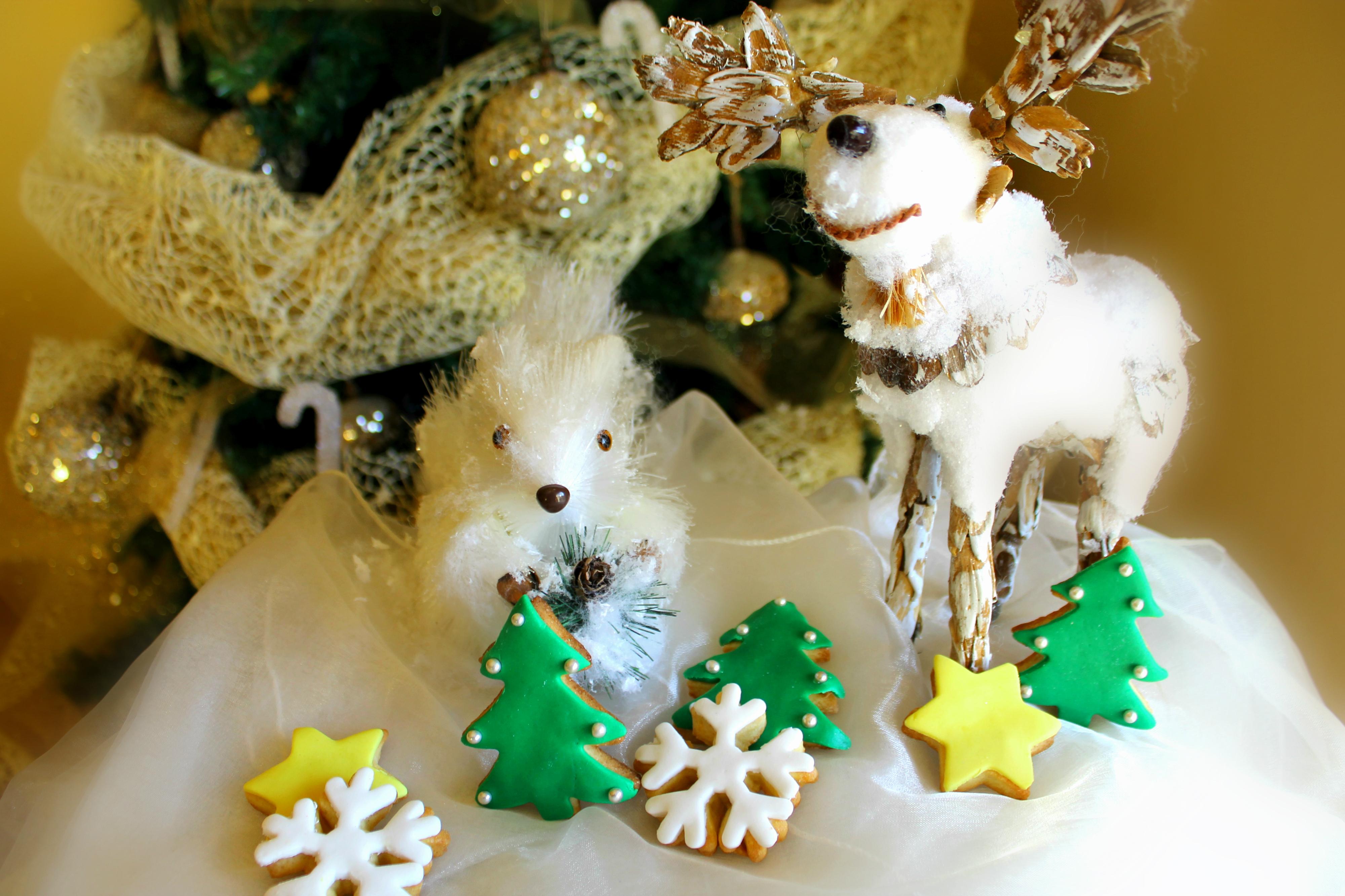Biscotti natalizi la cucina del cuore - La cucina del cuore ...