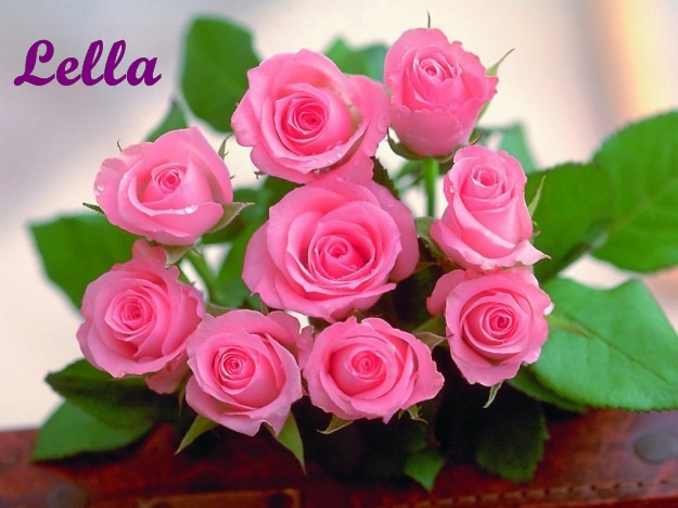 rose-rosa firma