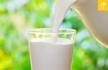 il-latte-fa-male-verita-e-falsi-miti