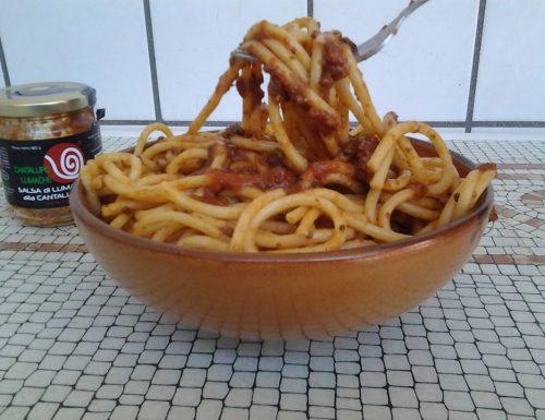 Bucatini con salsa di lumache