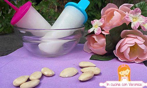 Ghiaccioli al latte di mandorla