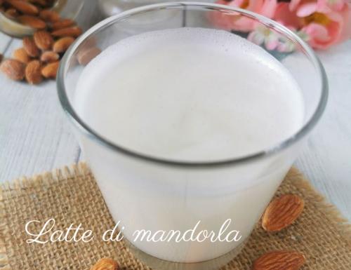 LATTE DI MANDORLA RICETTA BIMBY