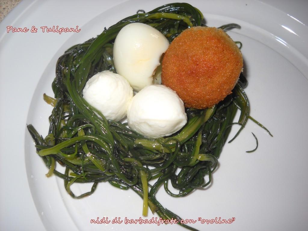 "nidi di barbadifrate con ""ovoline"""
