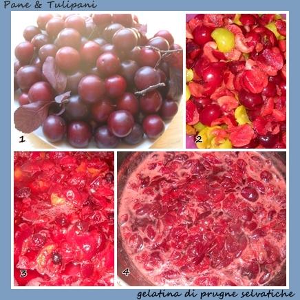 330-gelatina di prugne selvatiche-2